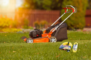 Best Electric Lawnmower (that plugs in)